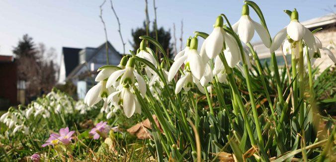 Gartenarbeiten im Frühjahr: Ab ins Beet!